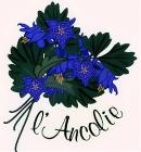 Logo de l'établissement L'Ancolie Chalet du lachotel logo