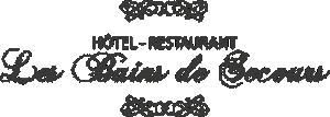 Logo de l'établissement Hôtel Les Bains de Secourshotel logo