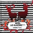 Logo de l'établissement Hôtel Les Glaciershotel logo