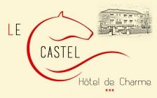 Logo de l'établissement Hotel Le Castelhotel logo