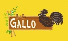 B&B IL GALLO hotel logohotel logo