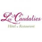 Hôtel-Restaurant Les Caudalies hotel logohotel logo