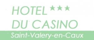 Logo de l'établissement Hôtel Du Casinohotel logo