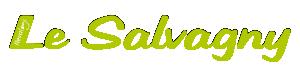 Logo de l'établissement Village Vacances Le Salvagnyhotel logo