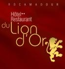 Logo de l'établissement Hotel du Lion d'Orhotel logo