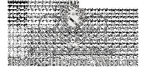 Eden Hotel Wolff Hotel Logohotel logo